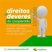 DOS PRINCIPAIS DIREITOS DO COOPERADO